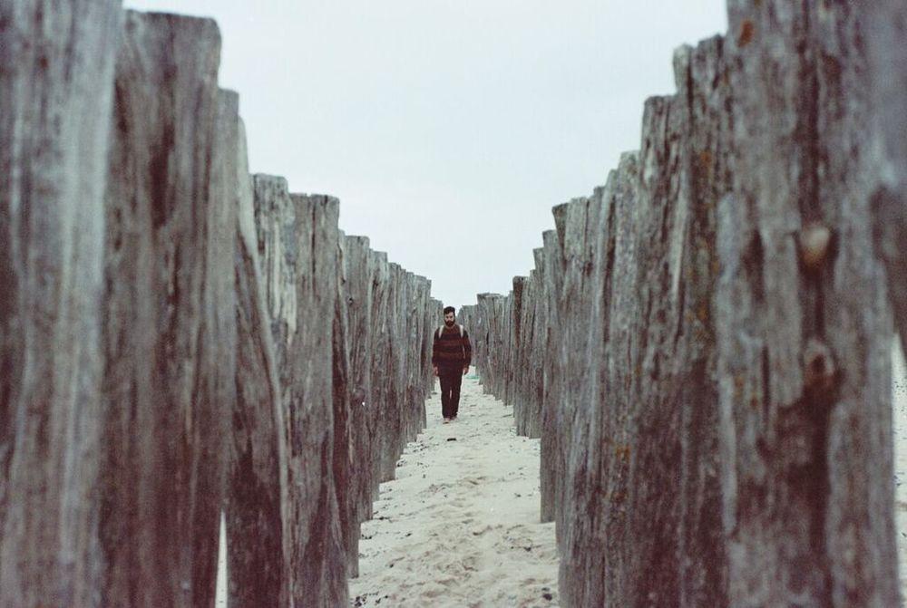 paseo-entre-troncos-en-el-mar.jpg