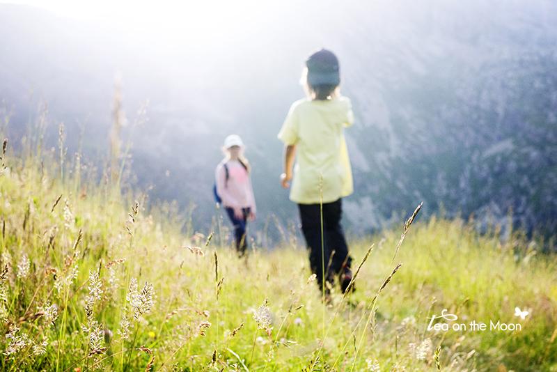 ruta-por-el-monte-con-niños.jpg