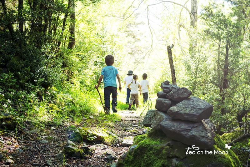 excursión-en-naturaleza-con-niños.jpg