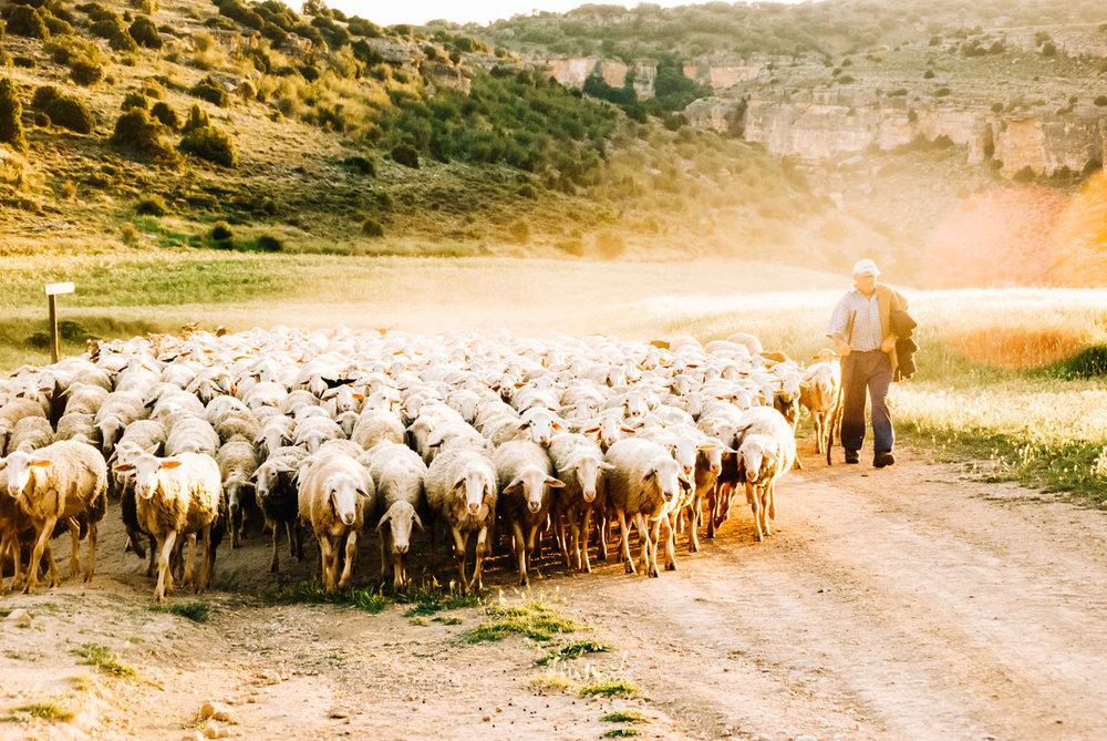 Fotografía: Alvaro Sanz *www.dealvarosanz.com