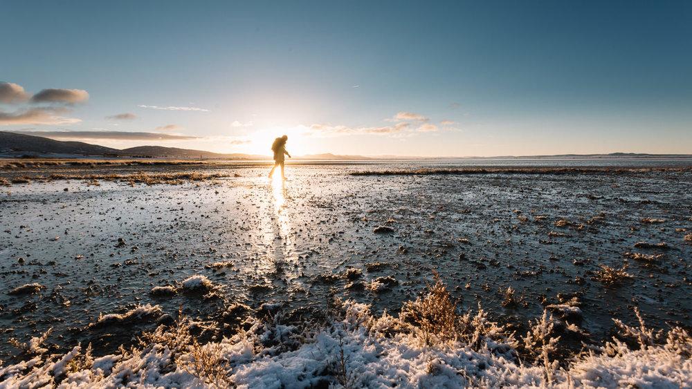 Frozen morning. Laguna de Gallocanta, Spain. 2014