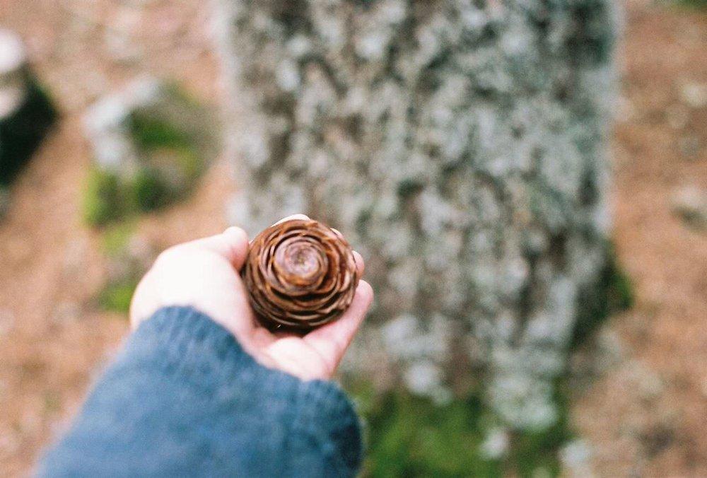 Geometría y naturaleza en Merzouga | Foto: María Larreina