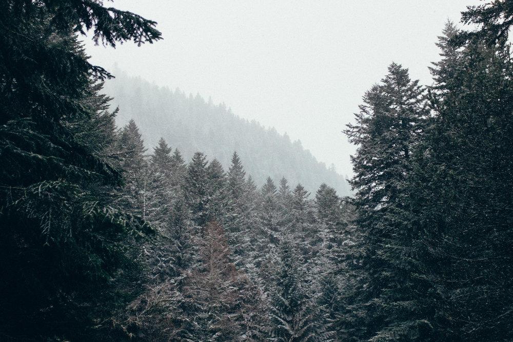 ¡Bienvenidos a la Expedición Alt Pirineu! -