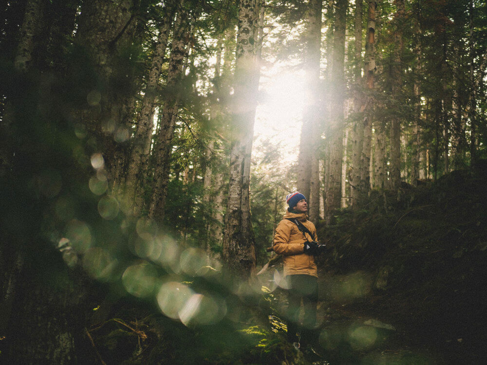 Bosque de Gerdar en el Alt Pirineu | Foto: Álvaro Sanz