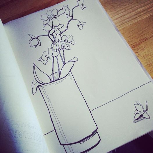 I figured that I'd better draw my orchid before I destroy it :)