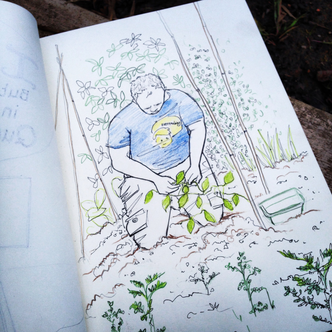 drawing at the allotment today :)