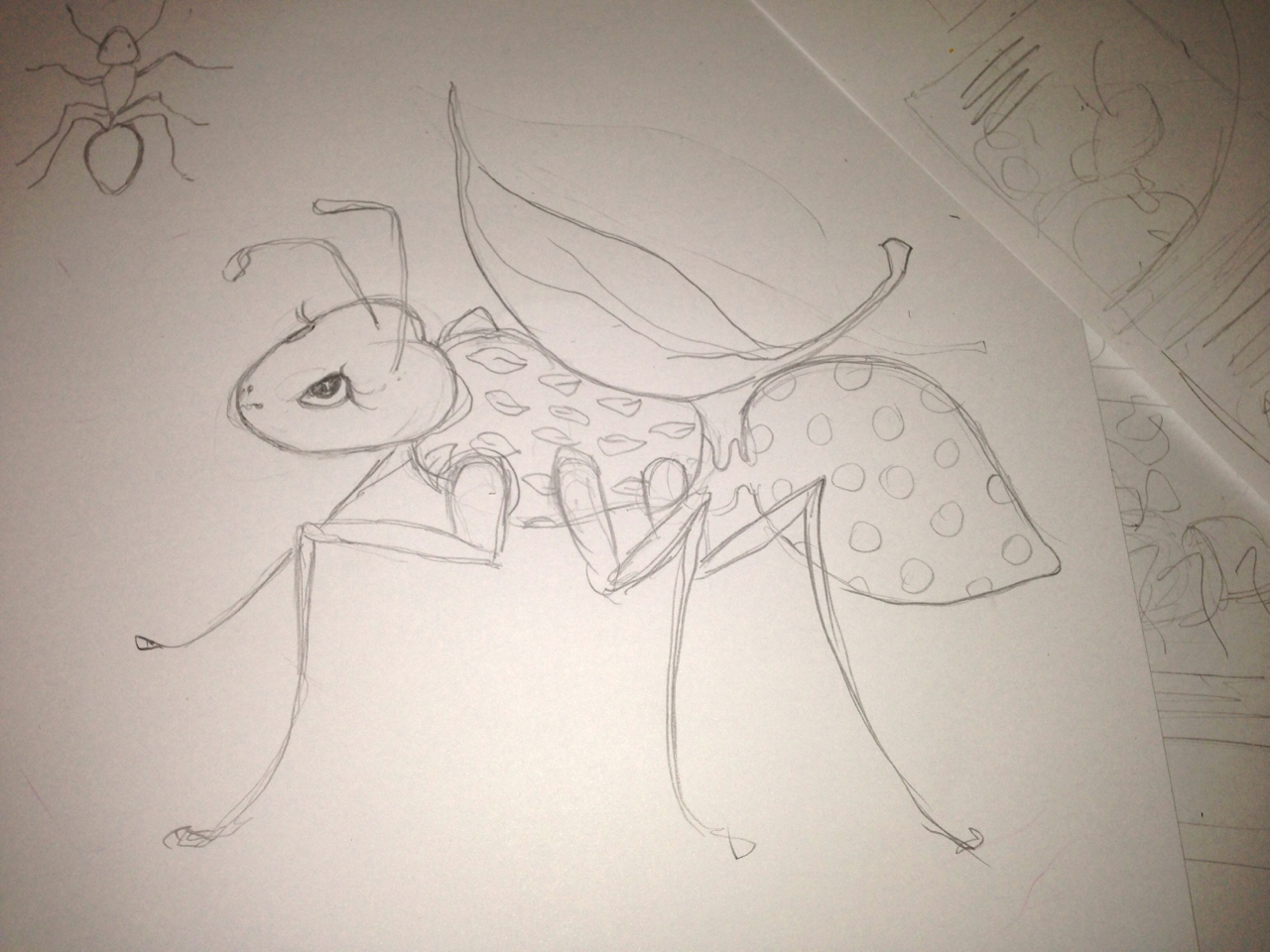 Some more sketches for my ant character…