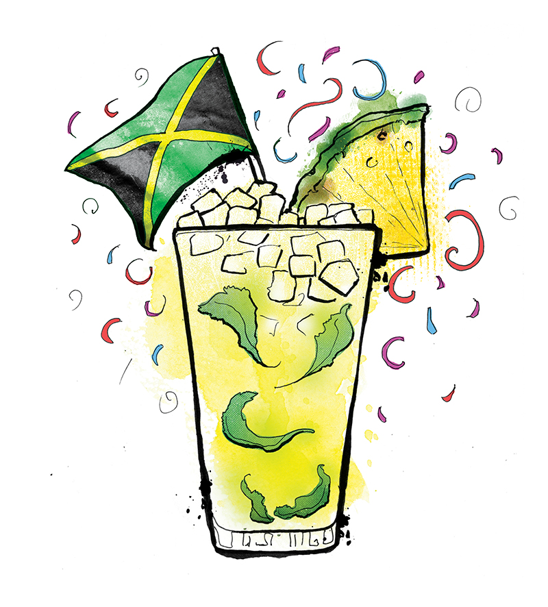 Jamaican me Crazy illustrated cocktail
