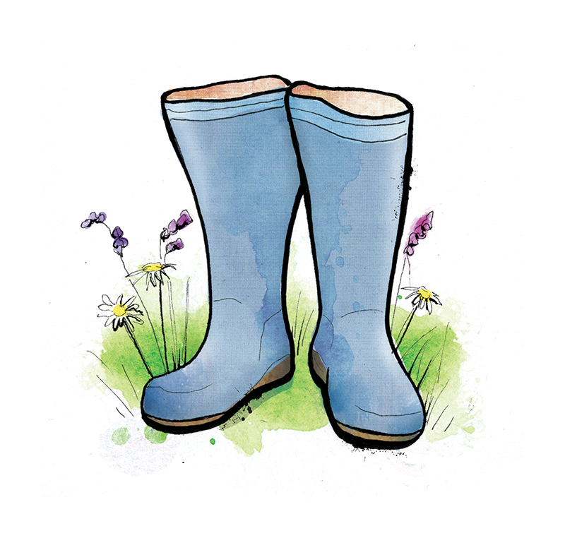 waitrose wellies illustration