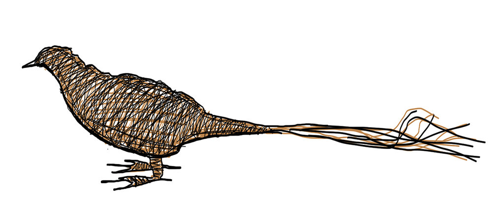 wicker animal