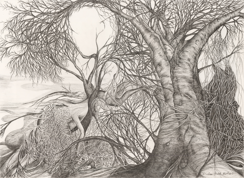 TREE HUGS - An exploration of the wisdom and healing energy of trees as a guide for humanity   Featuring a guided meditative tour, the collaborative work of pen and ink artist Kristina Hutch Matthews and musical genius Mike Mattice.