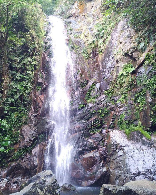Beauty of nature #waterfall #hiking #hike #outdoors #nature #fun #weekend #explore #jungle