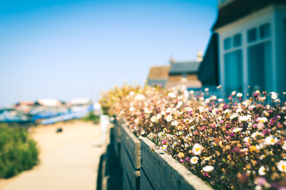 Whitstable is one of the most picturesque seaside towns in England.
