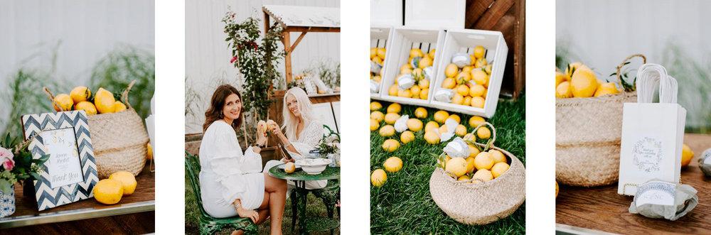 lemon_themed_farm_wedding_10.jpg