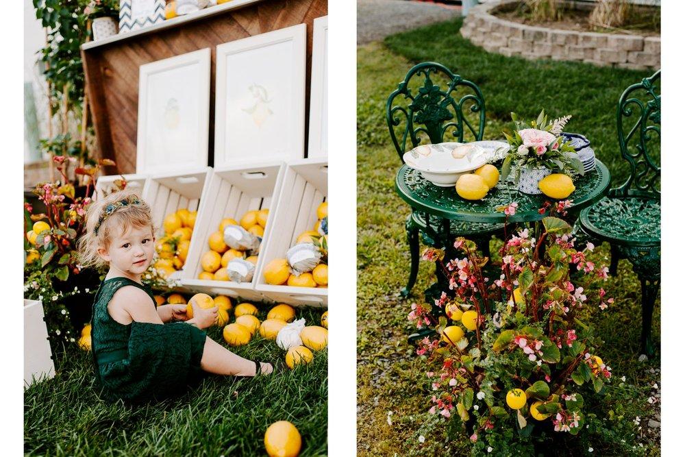 lemon_themed_farm_wedding_08.jpg