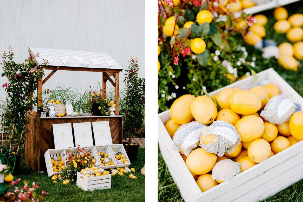 lemon_themed_farm_wedding_02.jpg
