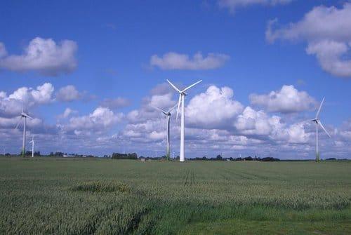 Vestas+V52-850kw+wind+turbine+farm.jpg