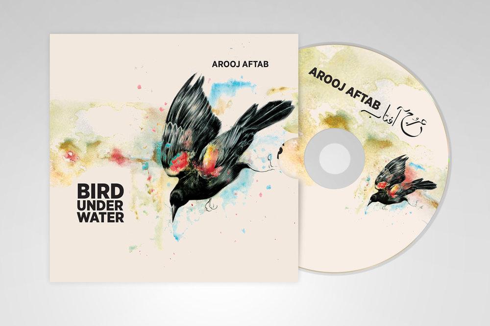 birdUnderWater1.jpg