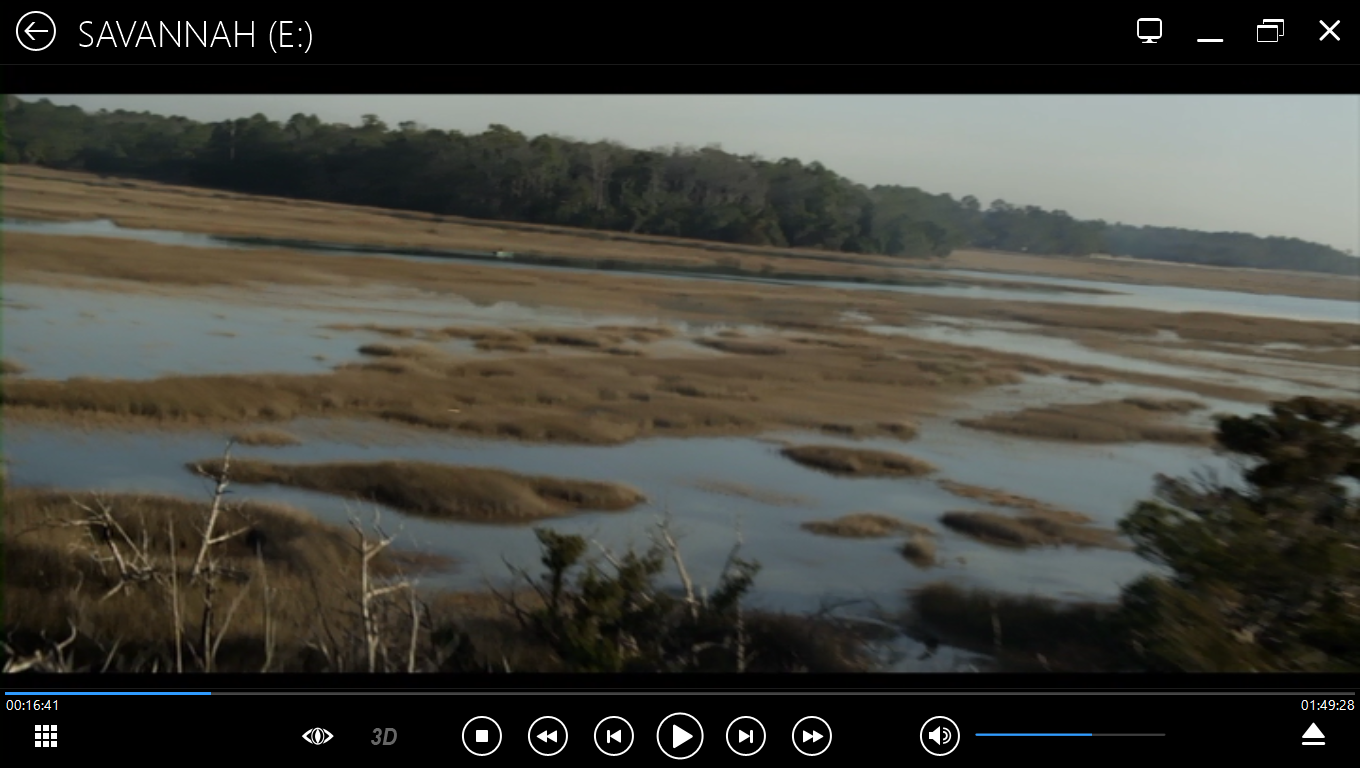 Savannah, marsh, aerial