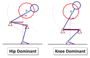 Hip vs Knee Squat.png