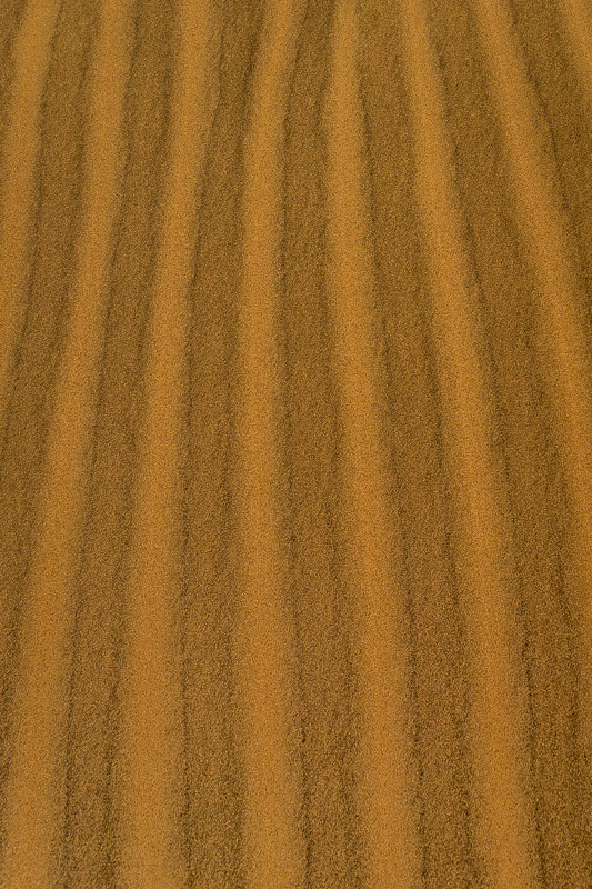 Alternating light and dark sand pattern on Kelso Dunes