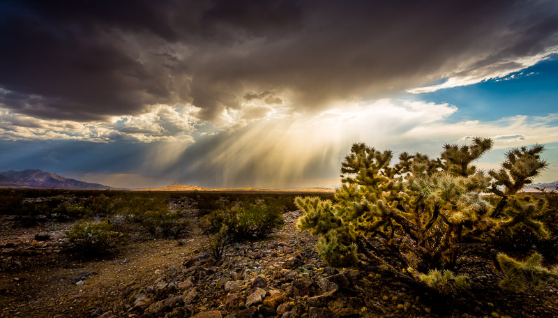 Thunderstorm over Kelso Dunes in Mojave National Preserve