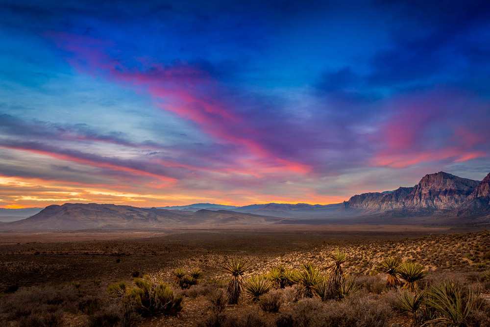 Painted Sky Valley  Sunrise Red Rock National Conservation Area.jpg