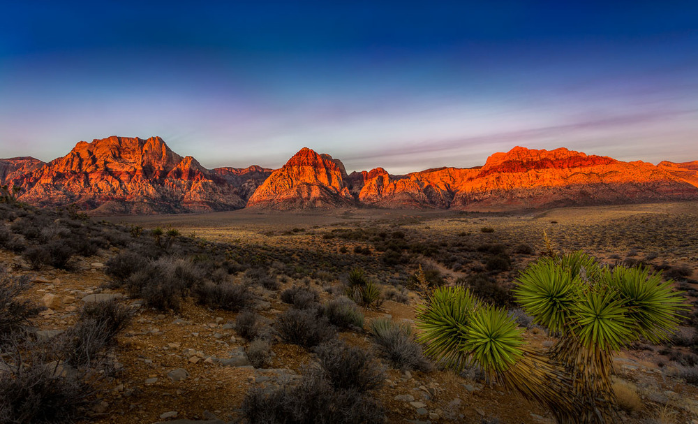 Golden Red Mountains at Red Rock