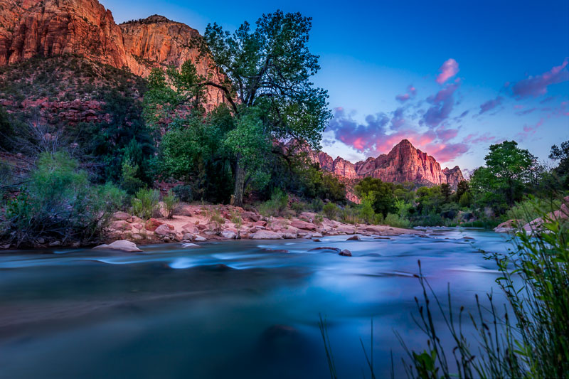 Virgin River and Watchman, Zion National Park
