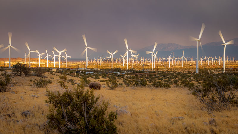 Wind turbines in Palm Springs, CA