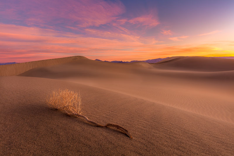 Mesquite Dunes Before Dawn, Death Valley National Park