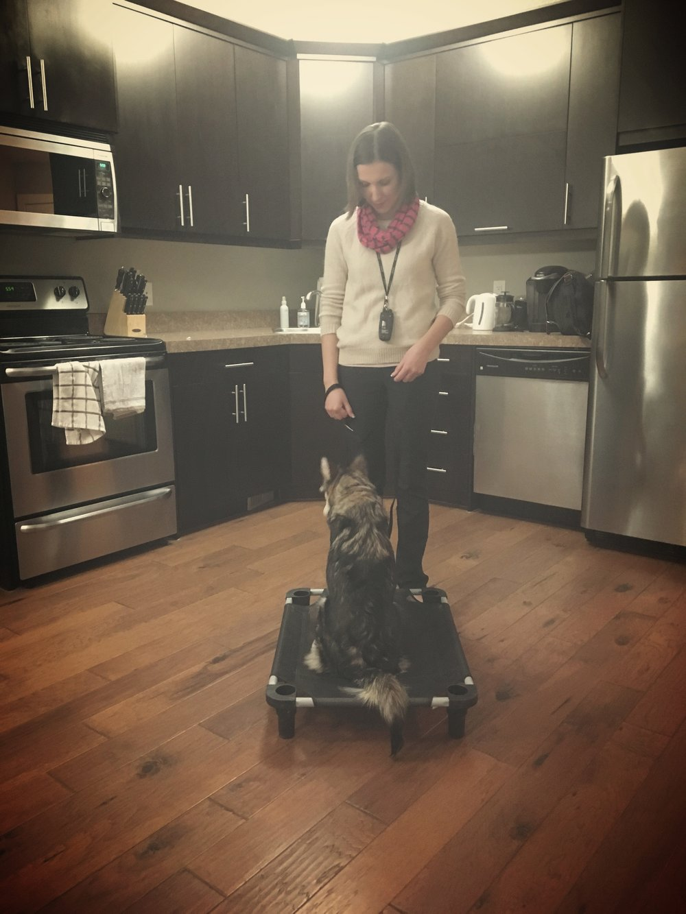 Maple and her owner Lauren working on the place command.