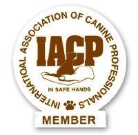 IACP2.jpg