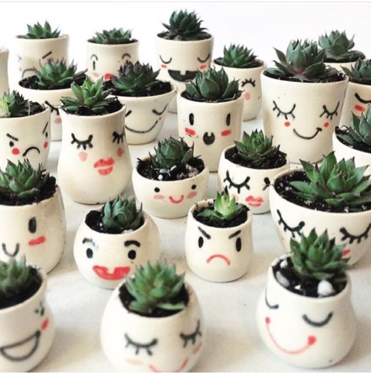 Rose Grown ceramics  Sonia Rose McCall has combined two of our favorite things-- hand thrown pottery and        succulents. Her bitty pots are TINY little homes for the tiniest of plants. They come in a variety of styles and make perfect gifts!