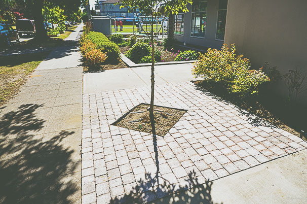 newly-paved area