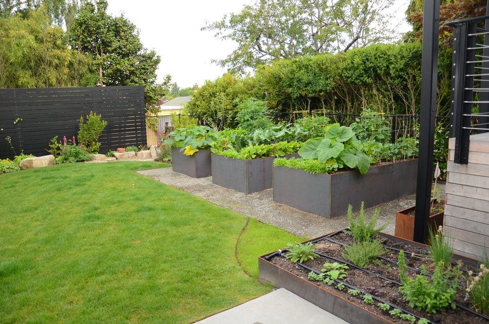 A garden with dedicated spaces for annual vegetables, perennial herbs, and ornamentals