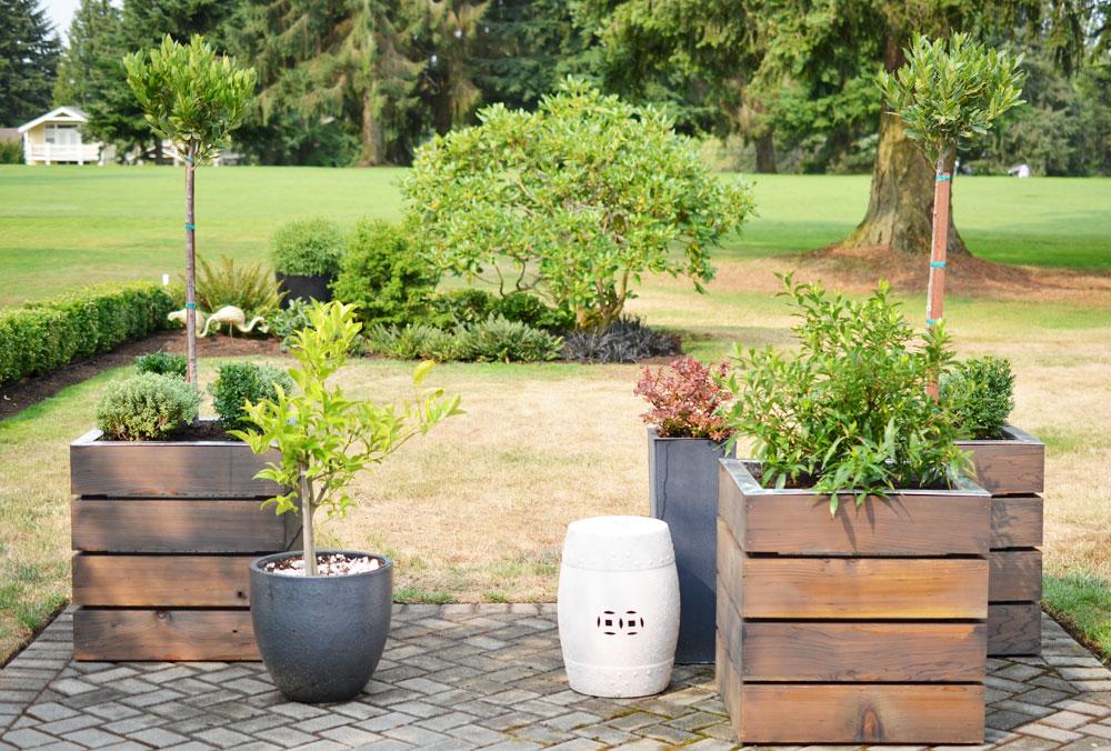 Amazing Modern, Monochromatic Patio Planters With Alexandra Hedin