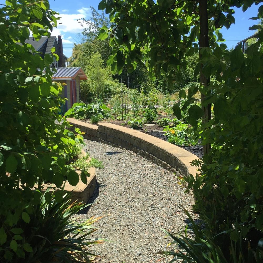 Garden4 (1).jpg