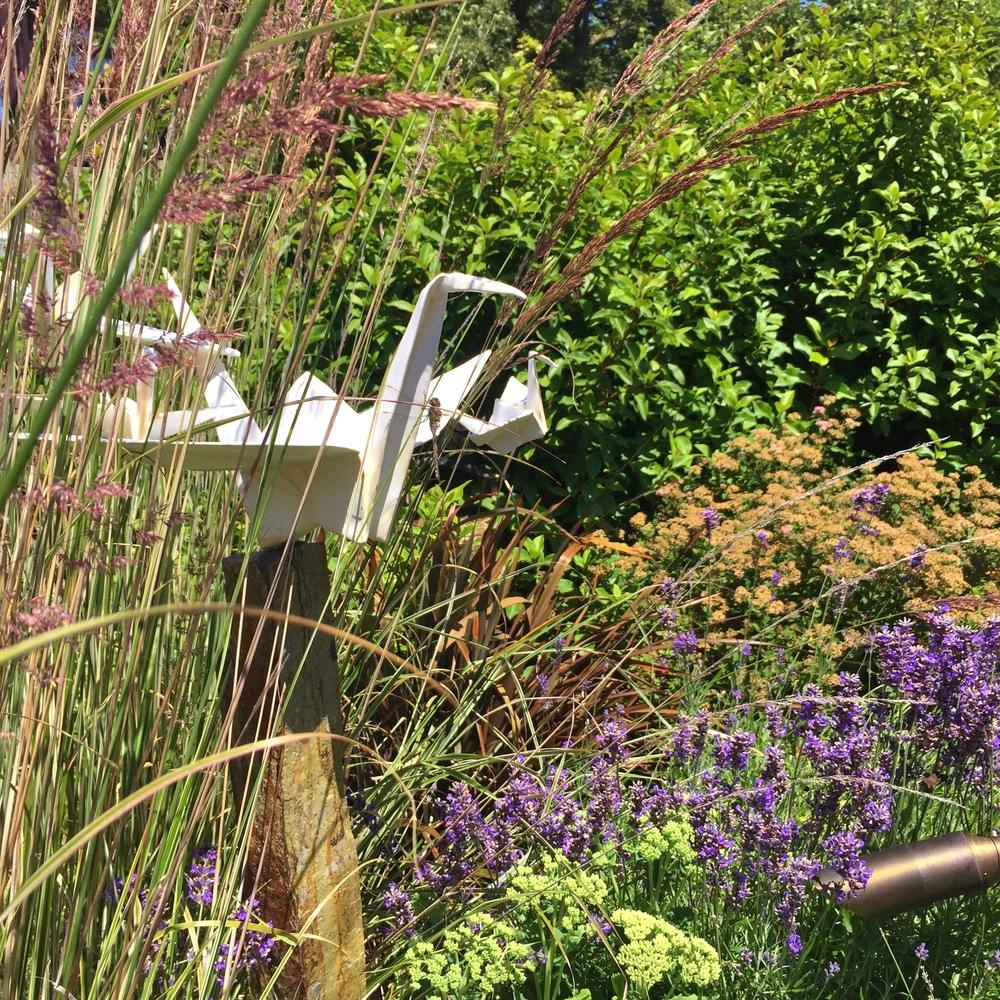 Garden7 (6).jpg