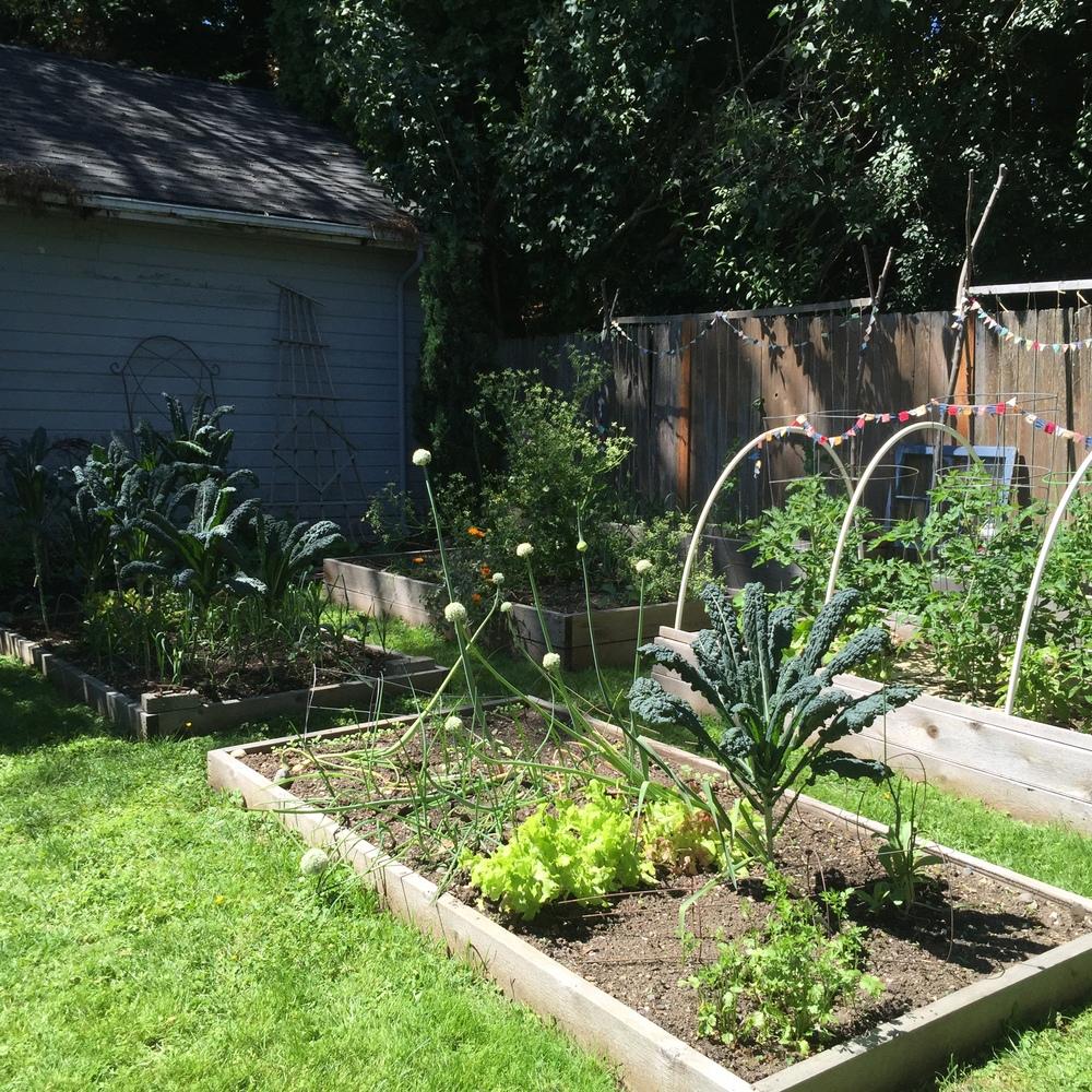 Garden14 (5).jpg