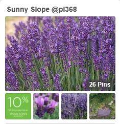 sunnyslope_snippet.JPG