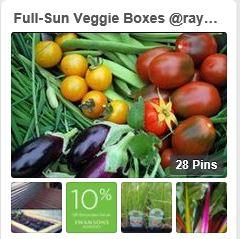 veggiebox_snippet.JPG