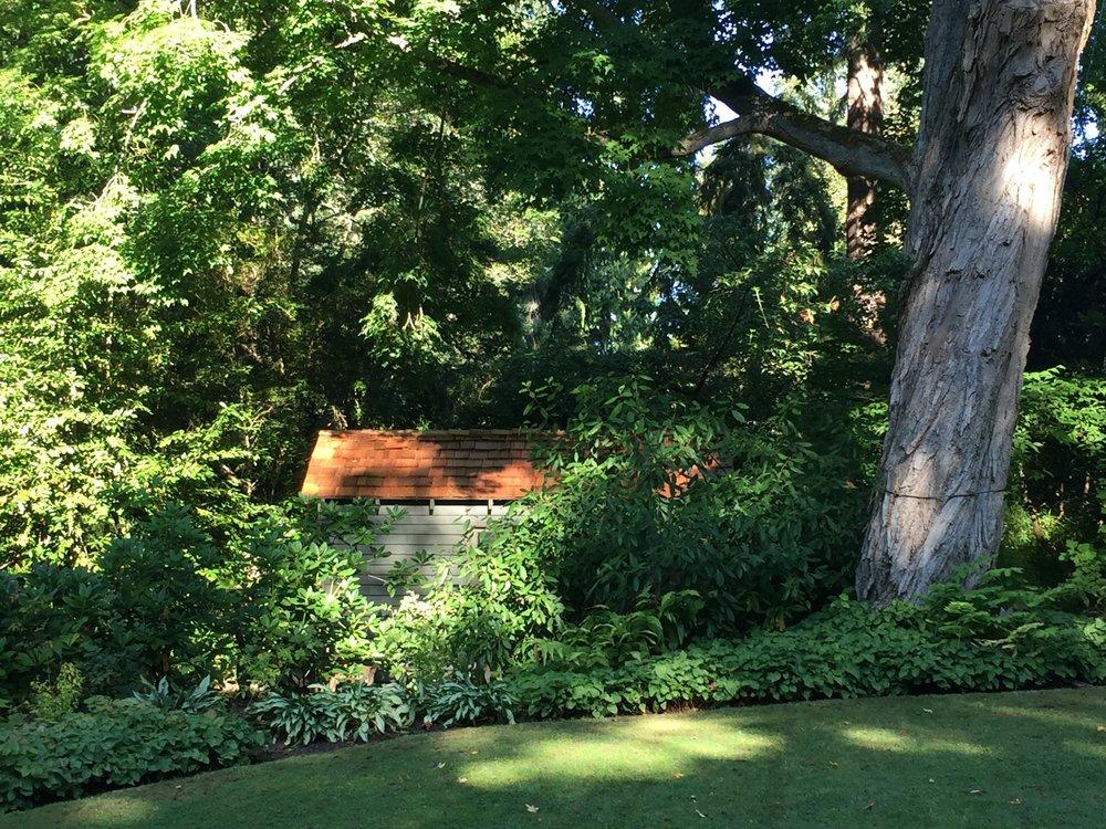 A Hidden Garden Shed