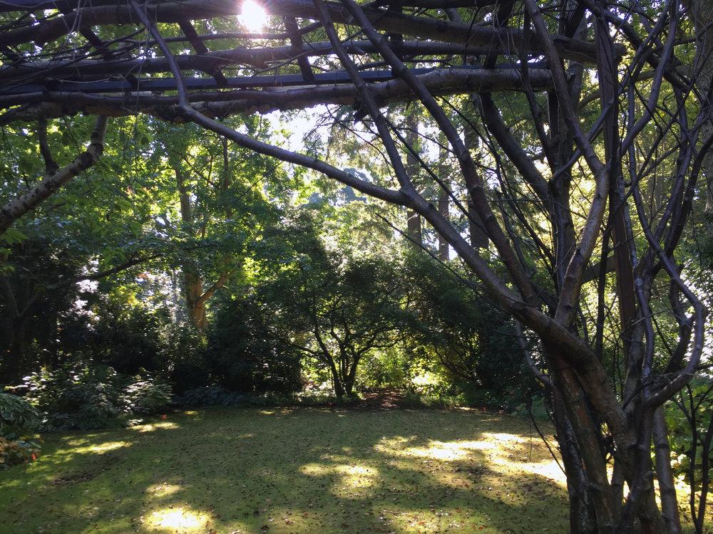 A Garden Room