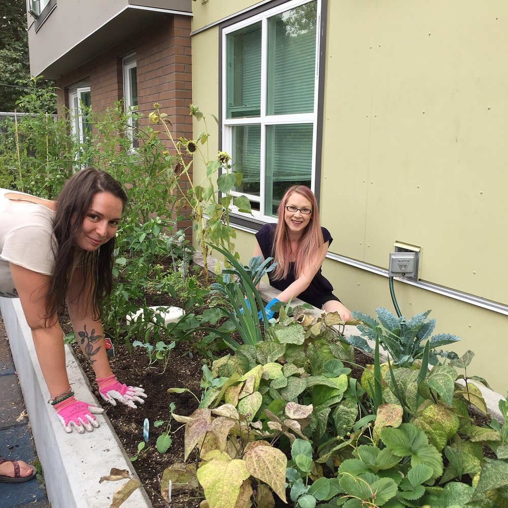 Fall planting at Compass on Dexter
