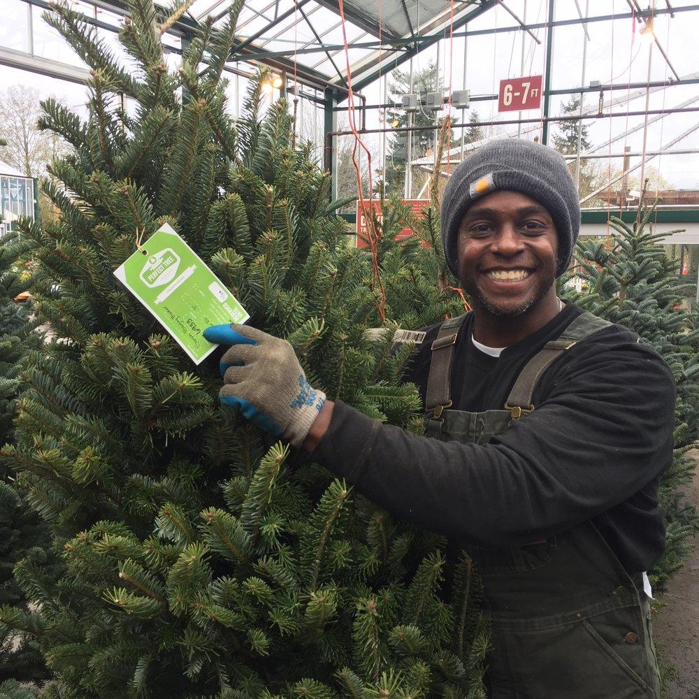 Geoffery helping a customer pick the perfect tree