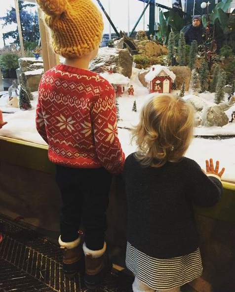 Watching the holiday train*