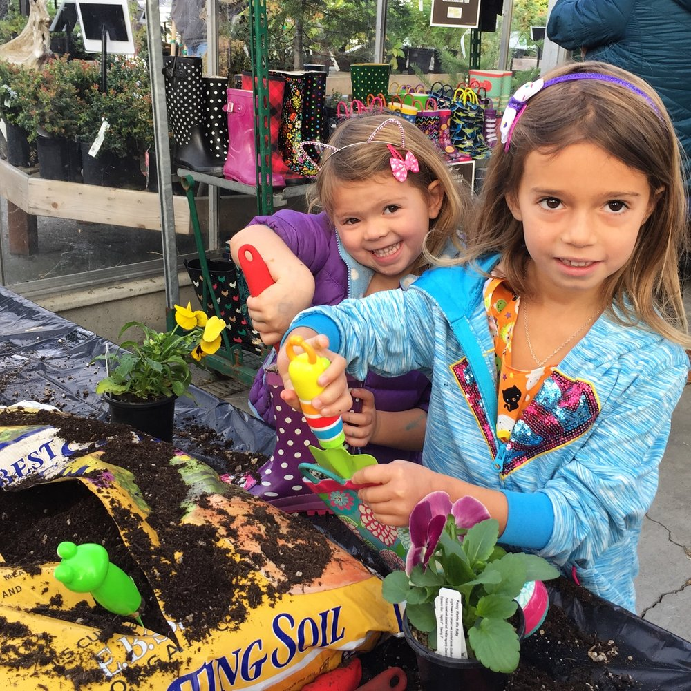 Planting rain boots at Fall Festival