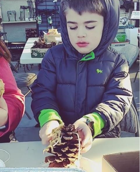 Building a bird feeder**
