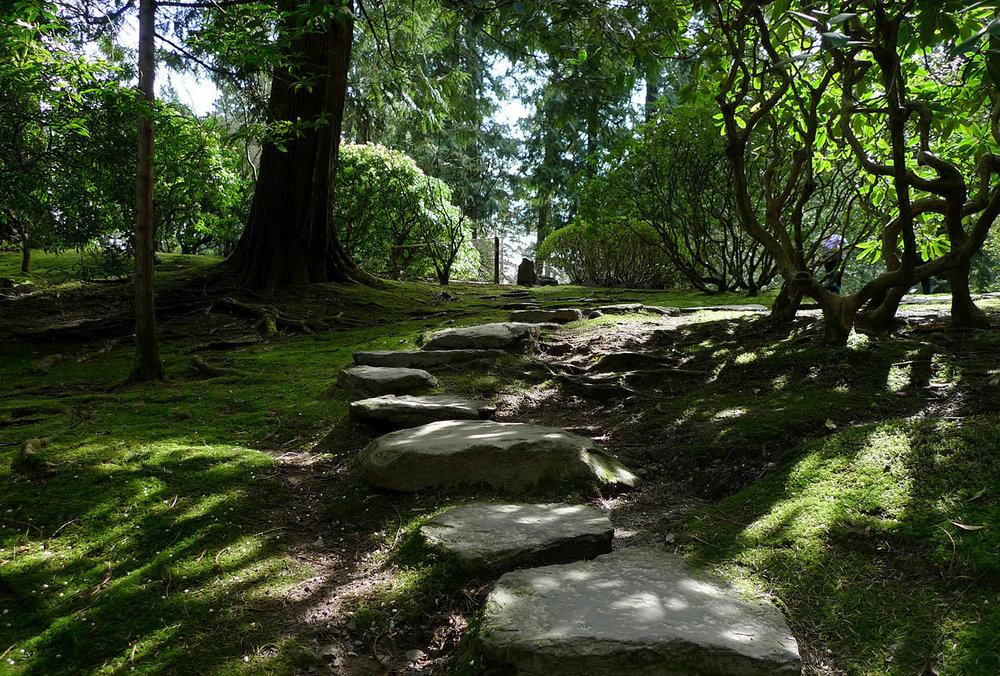 Living With Moss Swansons Nursery Seattle S Favorite Garden